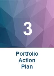 Portfolio Action Plan