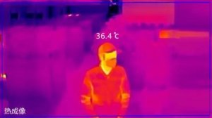 Interface of chinese temperature sensor, showing person of regular temperature.